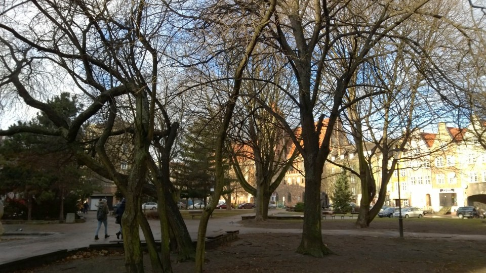 Beautiful park in Gdansk