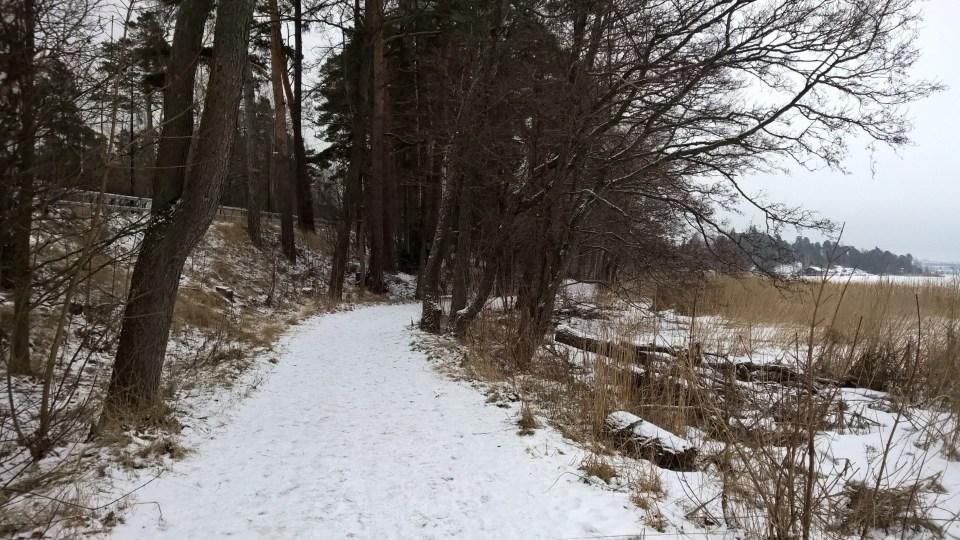 The snowy paths were nice to run