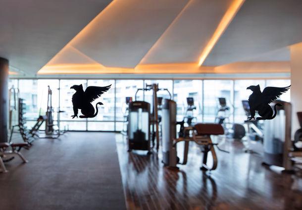 JW Marriott Shenzhen Bao'an Gym