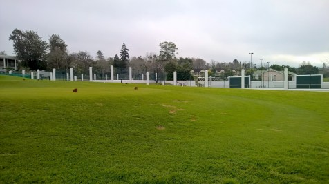 Running at Fancourt