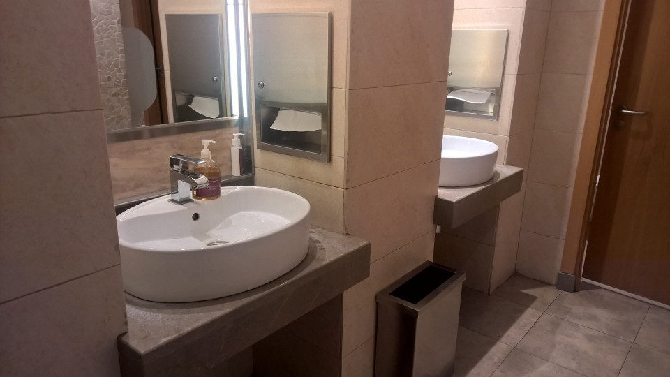 Iberia Dali VIP Lounge Madrid Washrooms