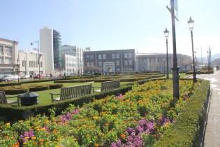 Dunedin Railway Station Gardens