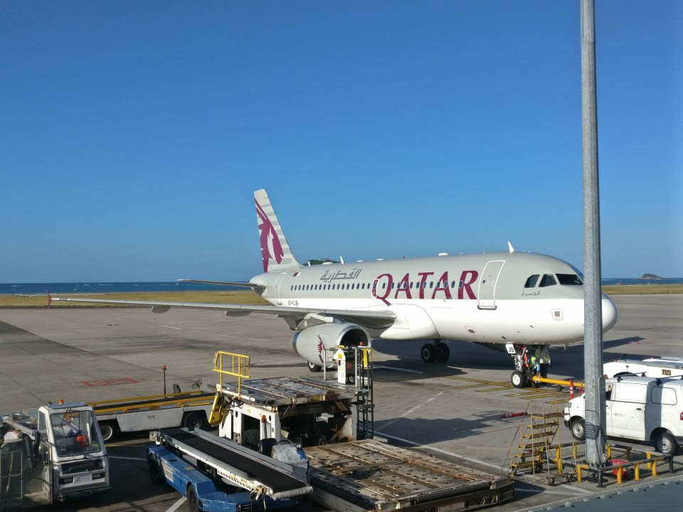 Qatar Airways Airbus A319