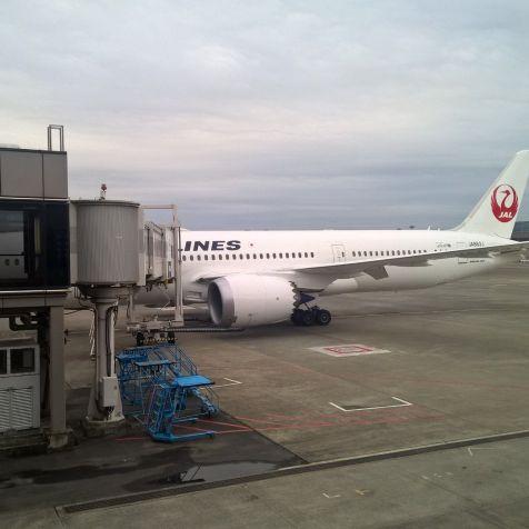JAL Sakura Lounge Tokyo Narita Satellite View