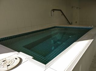 Pullman Auckland Jacuzzi