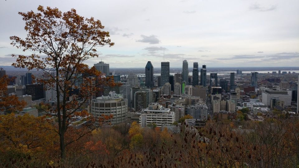 Montreal Mont Royal View