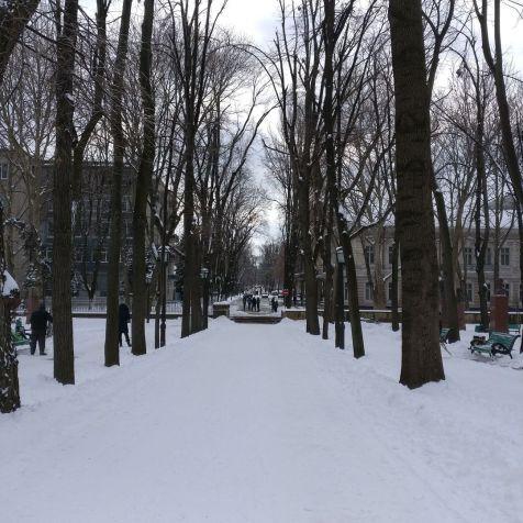 Central Park Chisinau