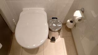 Crowne Plaza Hamburg City Center Club Room Bathroom