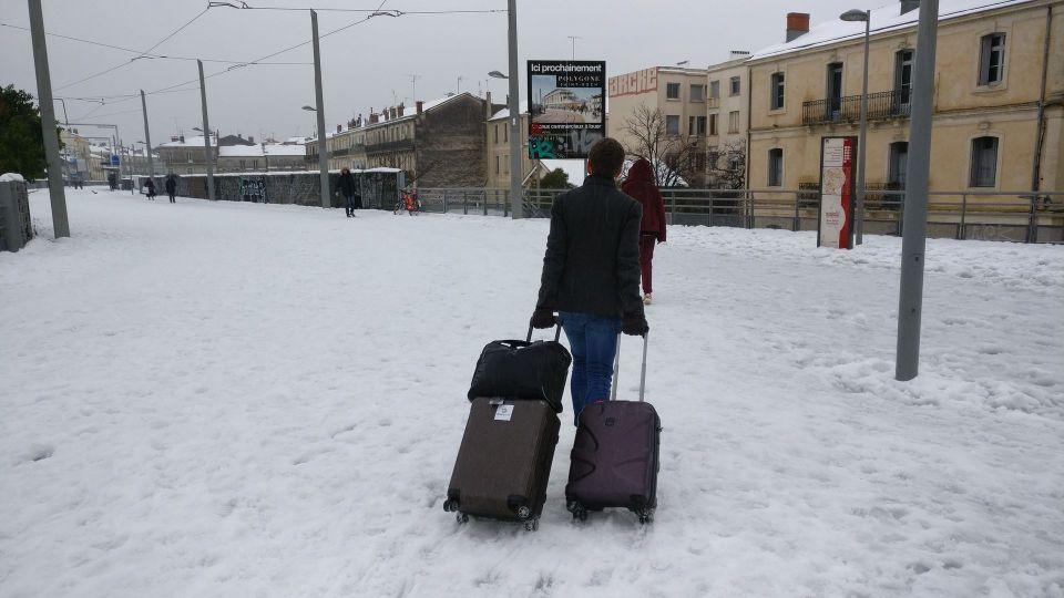 Moritz in the snow