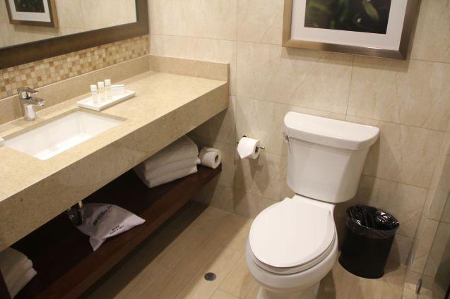 Hilton Garden Inn Cusco Scenic View Room Bathroom