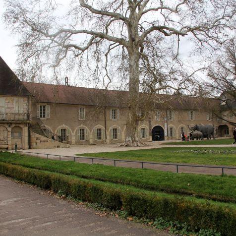 Museum d'Histoire de l'Arquebuse Dijon 2