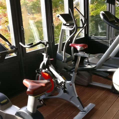 Heidelberg Suites Boutique Hotel Gym