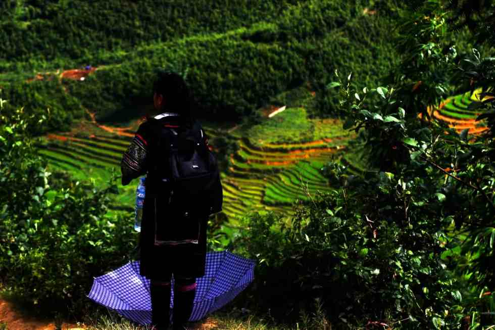 The Best Things To Do In Vietnam From Travel bloggers | Travelweekli