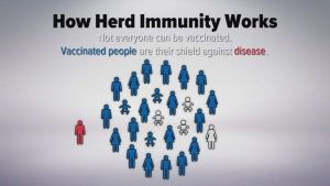 Tourism and Vaccination: From Herd Immunity to nothing -the list: