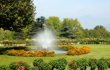 Things to Do and See in Srinagar