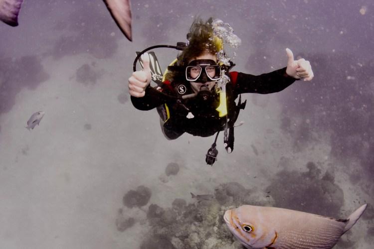 Great Barrier Reef ~ Australia