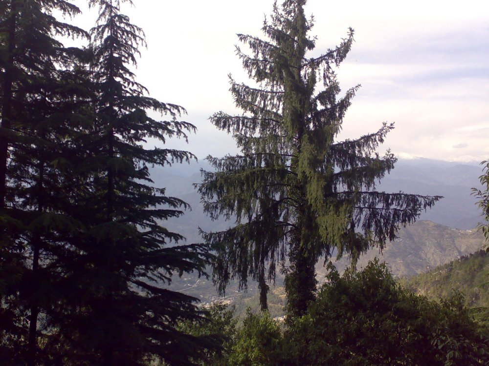 Dalhousie, a hill station in Himachal Pradesh, India