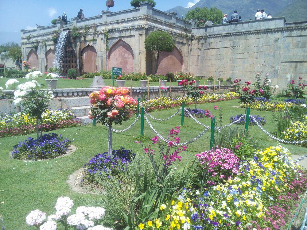 Nishat Bagh, Srinagar, Kashmir, India