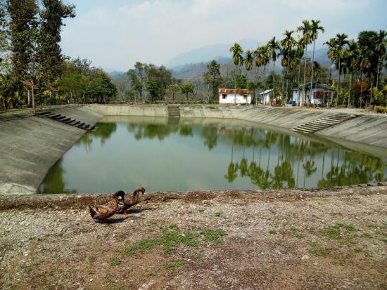 Raimatang Forest Village