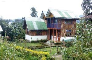 Yoksome Dorjee Homestay