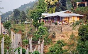 Naku Pelling Resort