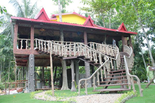 tree-house-bawali arshinagar