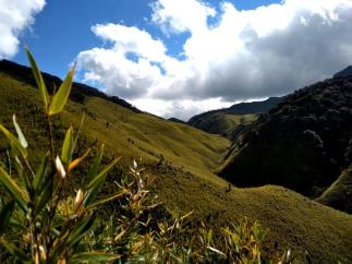 Attractions of Nagaland