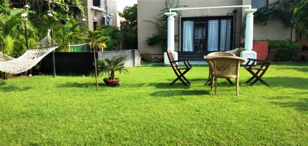 backyard1-1024x485.jpg
