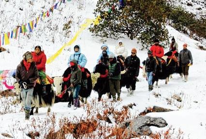 extended-darjeeling-gangtok-tour-6305.jpg