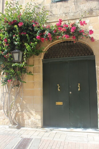 Dark green door with fish shaped handles and pink flowers