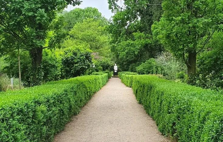 Gradina botanica din Macea, obiective turistice din judetul Arad