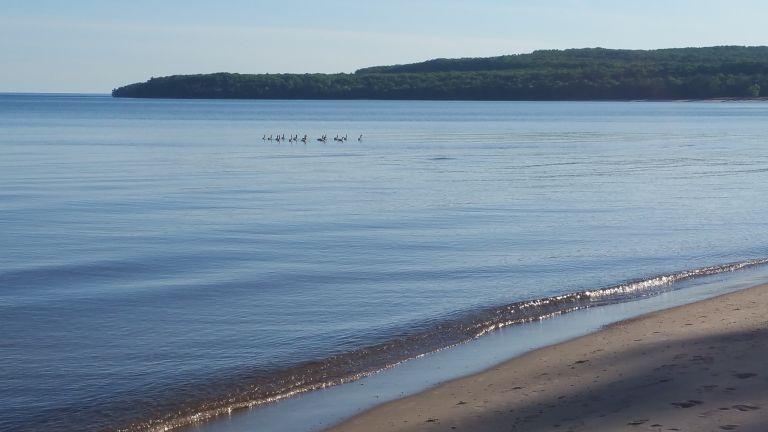 Sand Beach Pancake Bay