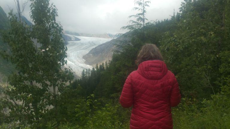 Salmon Glacier from Summit