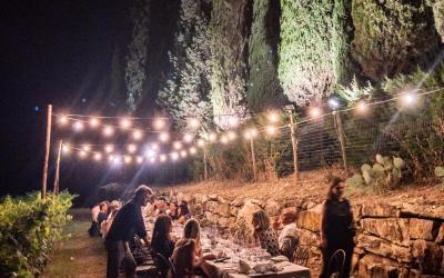 Cosa vedere e mangiare a Siena: degustazioni in azienda