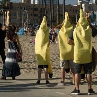 Bananas in Waiting