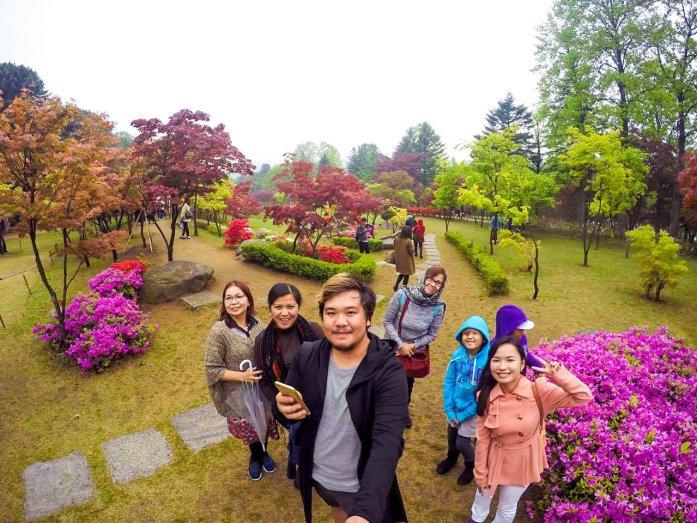 Spring in Korea