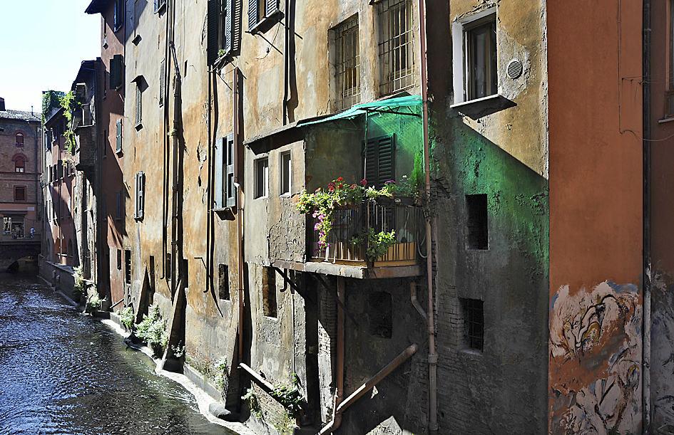 Uncovering the secrets of Bologna