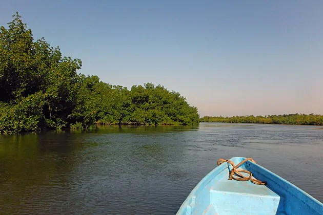 Canoeing on Mandina Bolon