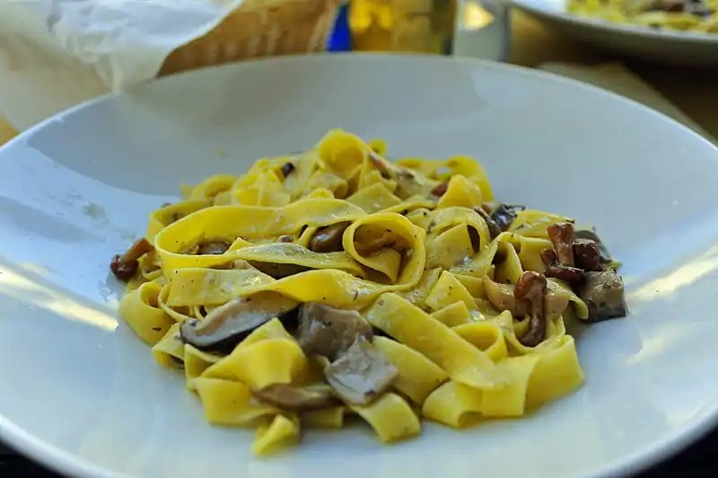 Wild mushroom pasta, one of the best things to eat in Italy