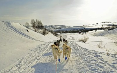 Feeling a little chilly? A photo essay on the #FriFotos theme #cold