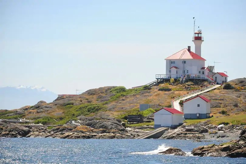 Whale watching trip from Victoria, British Columbia, Canada