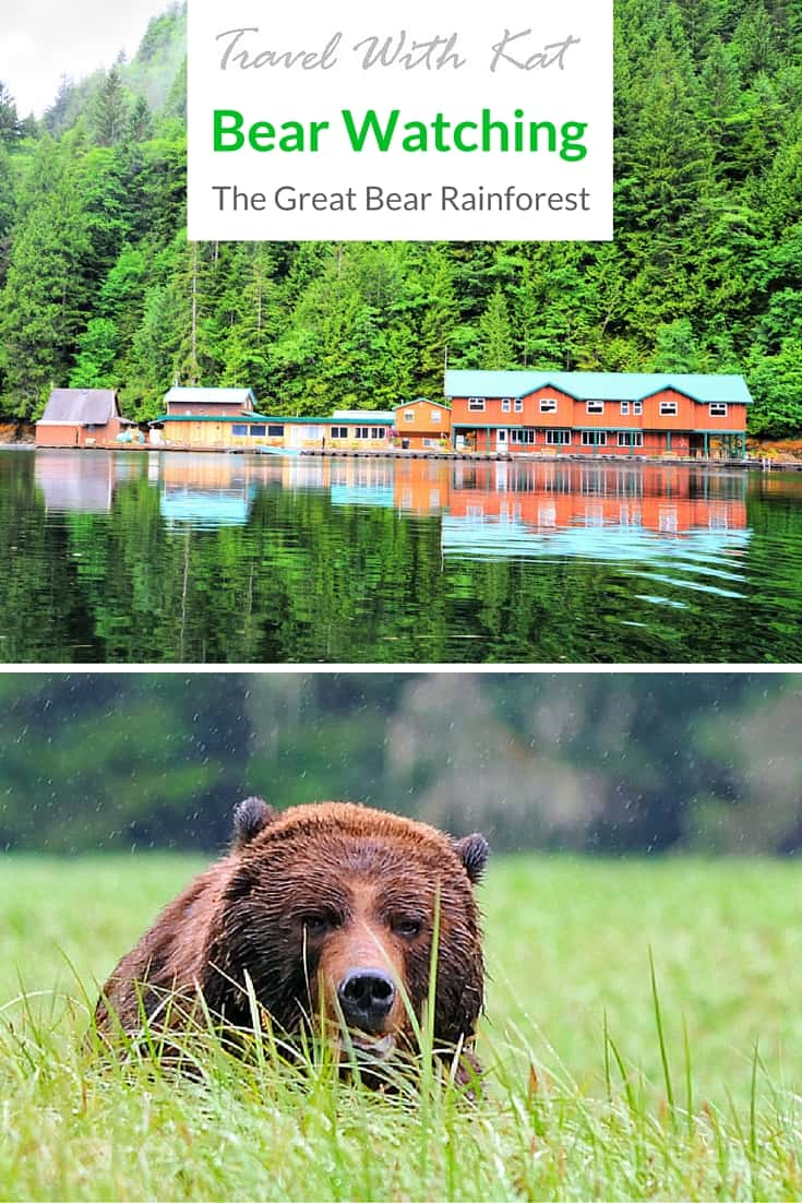 Bear watching in the Great Bear Rainforest, British Columbia, Canada