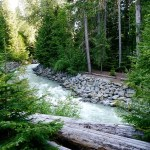 Discovering Canada's wild side at Whistler