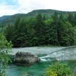 Vancouver Island, Canada Road Trip