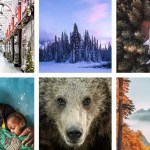 12 awesome travel & wildlife photographers to follow on Instagram in 2018