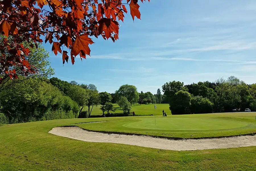 Golf at Handcrafted chocolates in the heart of the New Forest