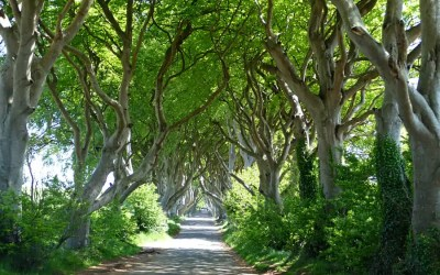 How to visit Game of Thrones filming locations in Northern Ireland