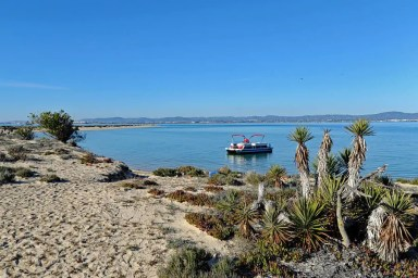 Take a boat ride around Ria Formosa Natural Park