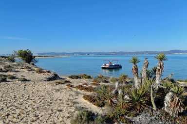 Take a boat ride around Ria Formosa Natural Park