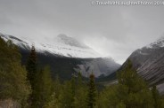 Peyto Lake to Bridal Veil Falls-9995
